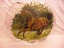 Kolekcja Konie